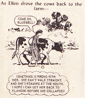 ellen of elmwood farm