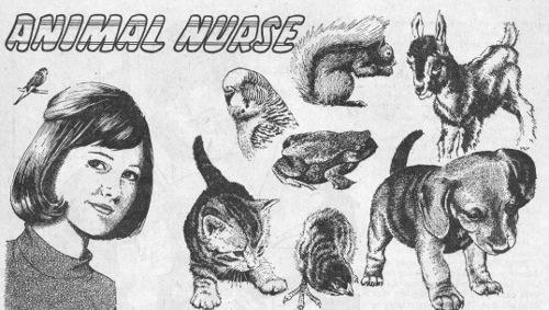 animal-nurse