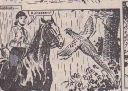 debbiehorses 1985
